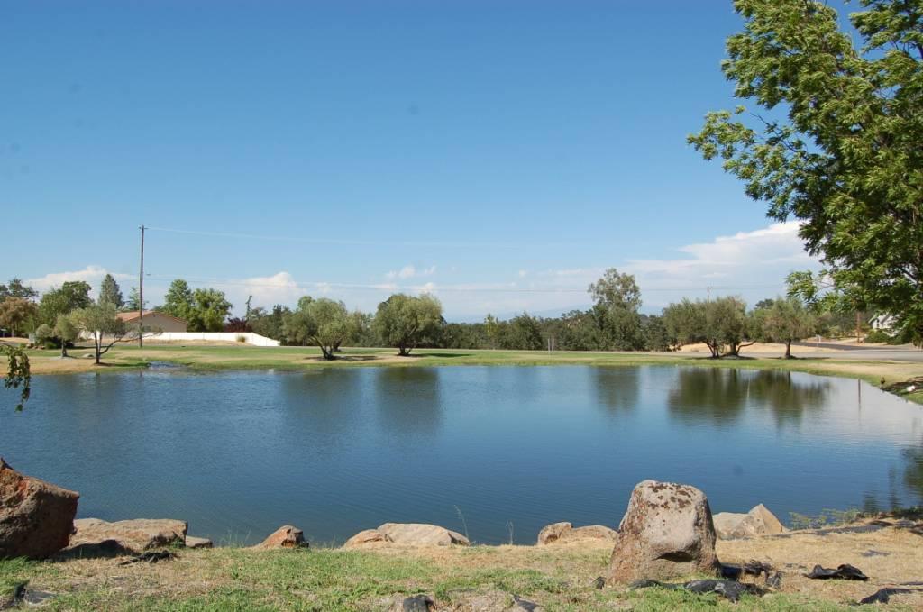 Lake California Pond