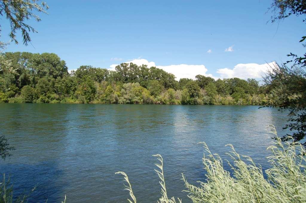 Sacramento River by Lake California