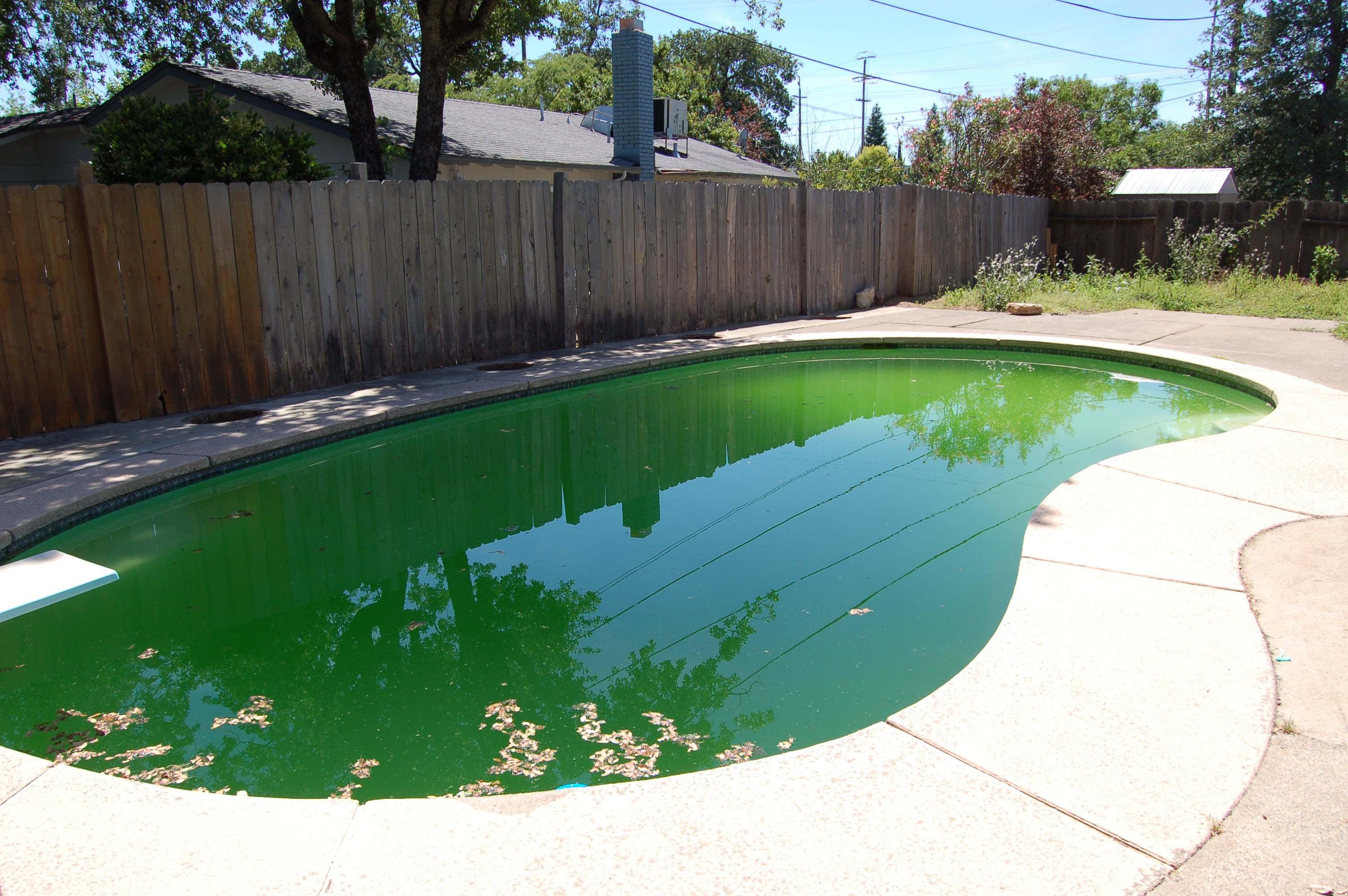 1049 Mistletoe Ln Redding CA Pool