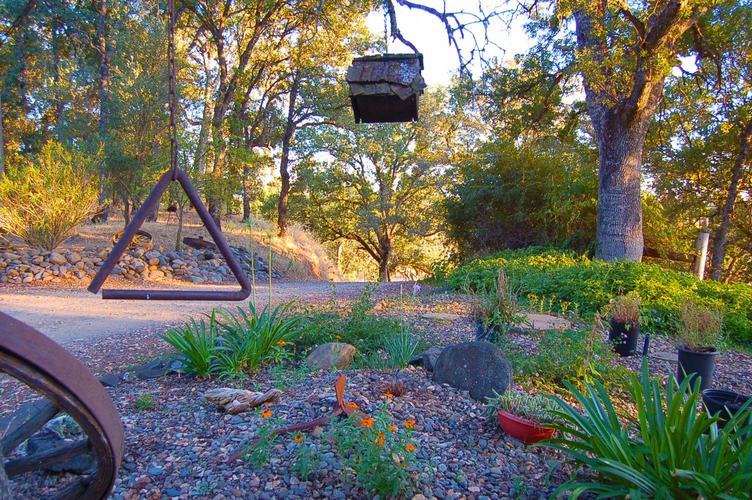 17410-Hooker-Creek-Rd-Cottonwood-CA-frontyard
