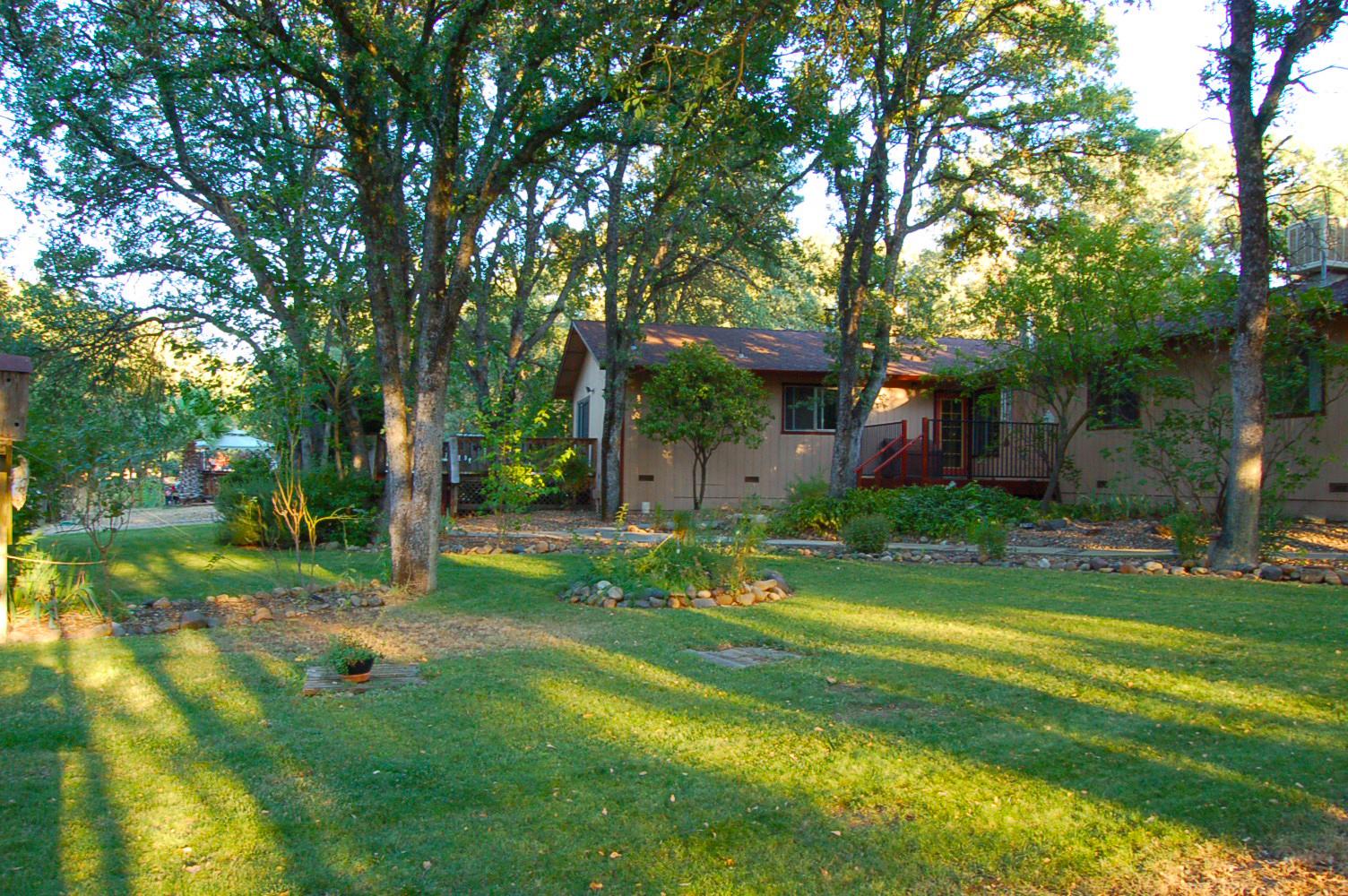 17410-Hooker-Creek-Rd-Cottonwood-CA-yard