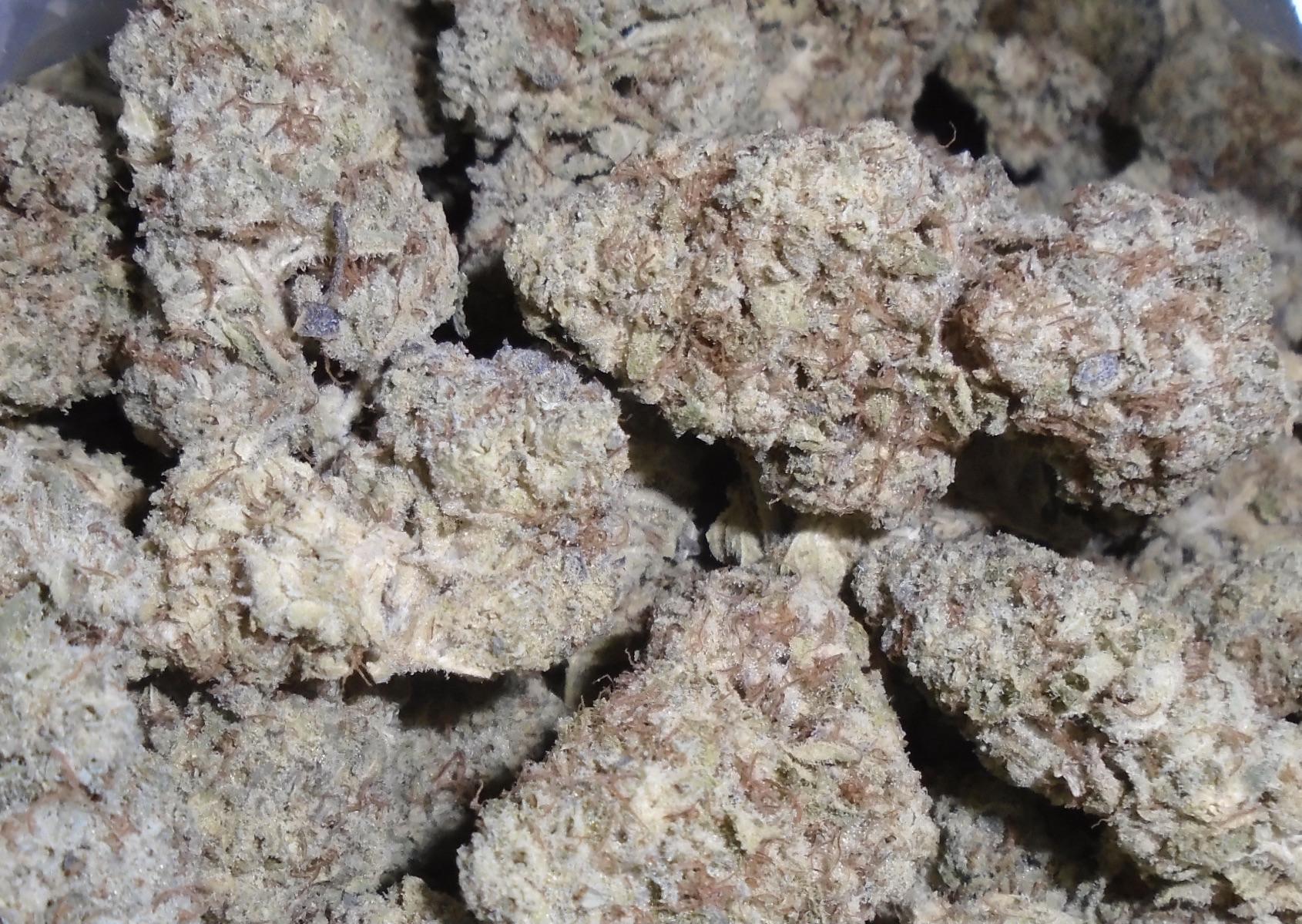 Hawaiian Dutch Indoor Cannabis